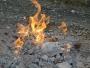 """""""Focul Viu"""" – o minune a naturii din munții Vrancea"""